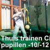Judocircuit Thuis Trainen u10 u12 oefeningen week 5