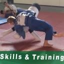 skills en training