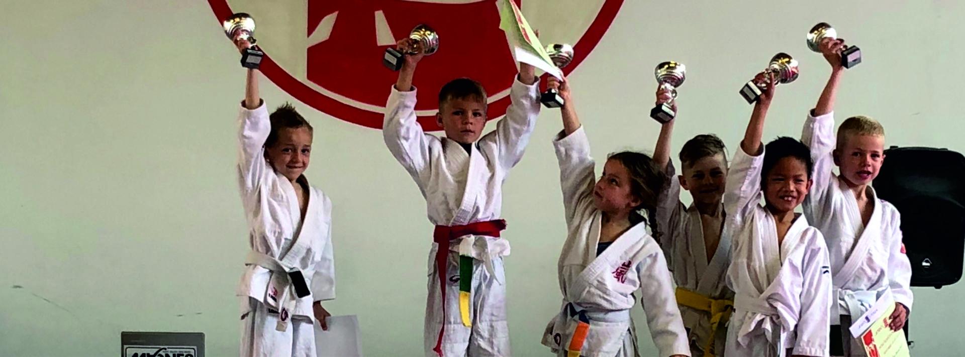 Judo Yushi Puntencompetitie
